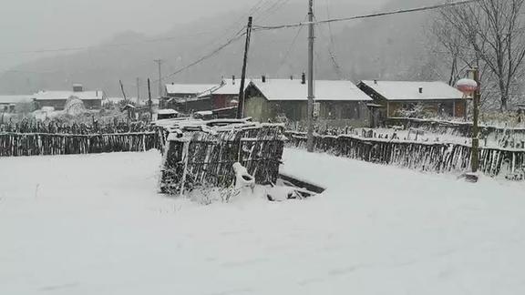 刚到春生客栈就看到了雪谷的第一场大雪!