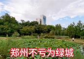 郑州和我们想象的不一样啊,老城区走一圈,新一线城市名副其实