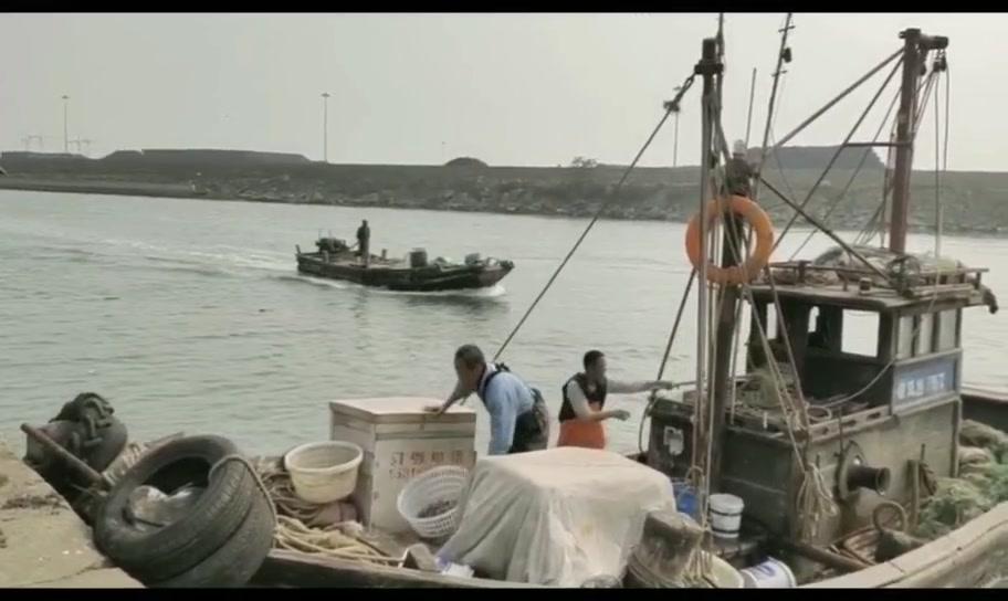 没想到渔民爆网,小伙赶紧登船收海鲜,八爪和皮皮虾包圆