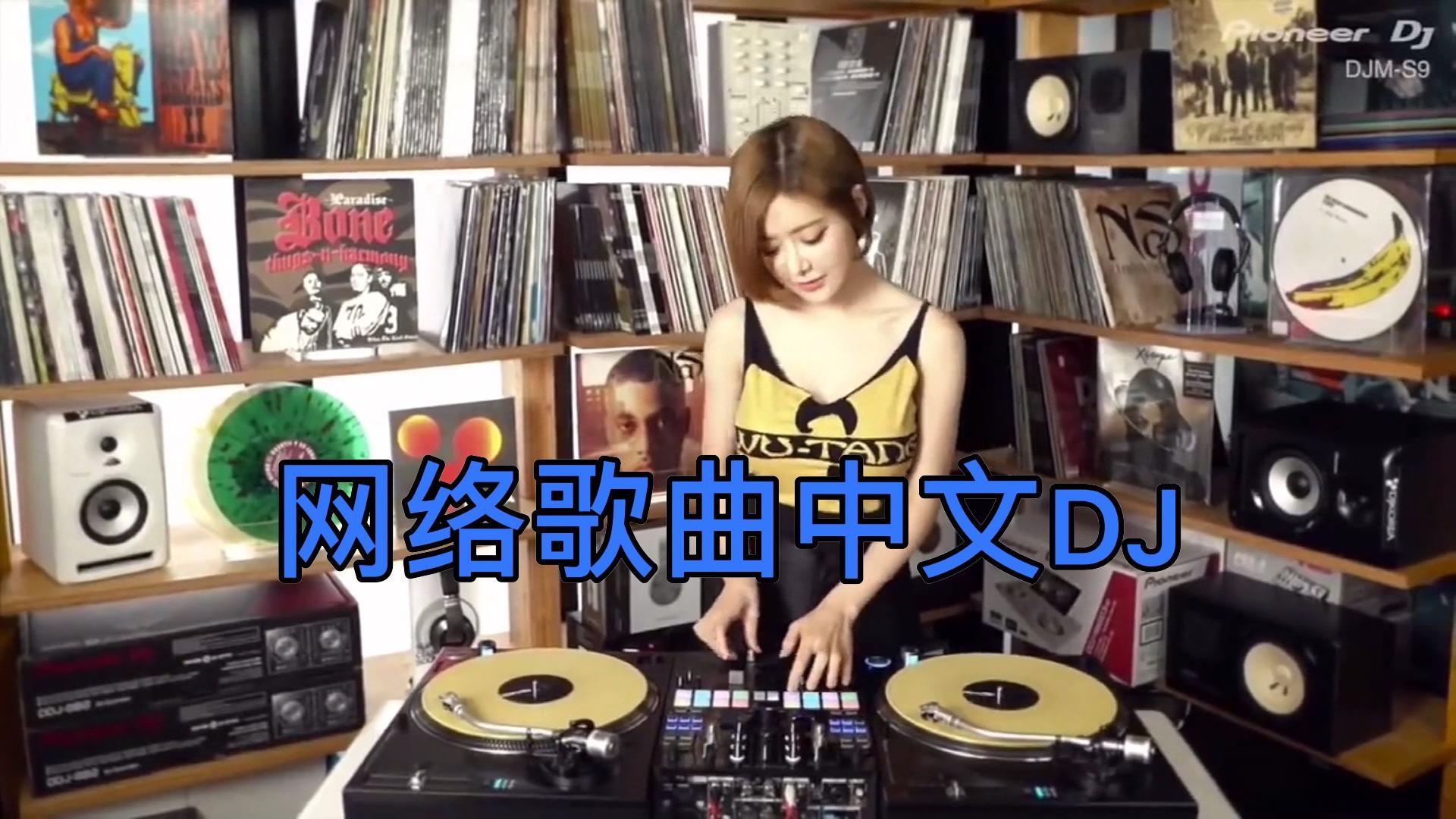 经典网络歌曲中文DJ