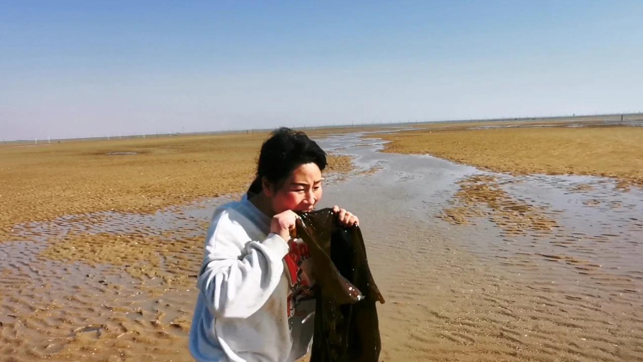 赶海发现三米大海带,带回家够吃好几天的,可把玲子高兴坏了