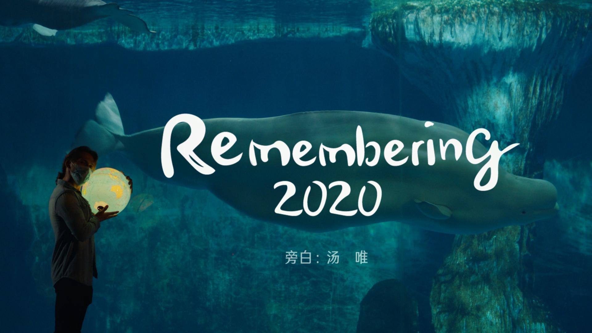 汤唯旁白版《2020使用说明书》