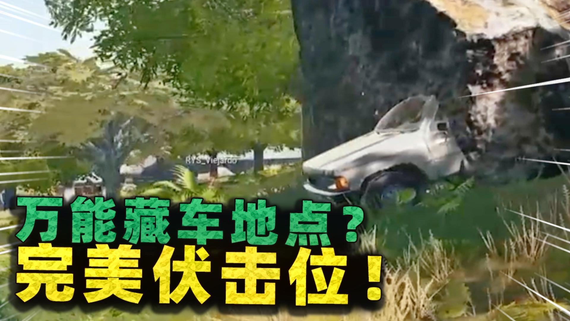用这种方法能把车藏石头里?躲车上伏击,来多少人都能杀!