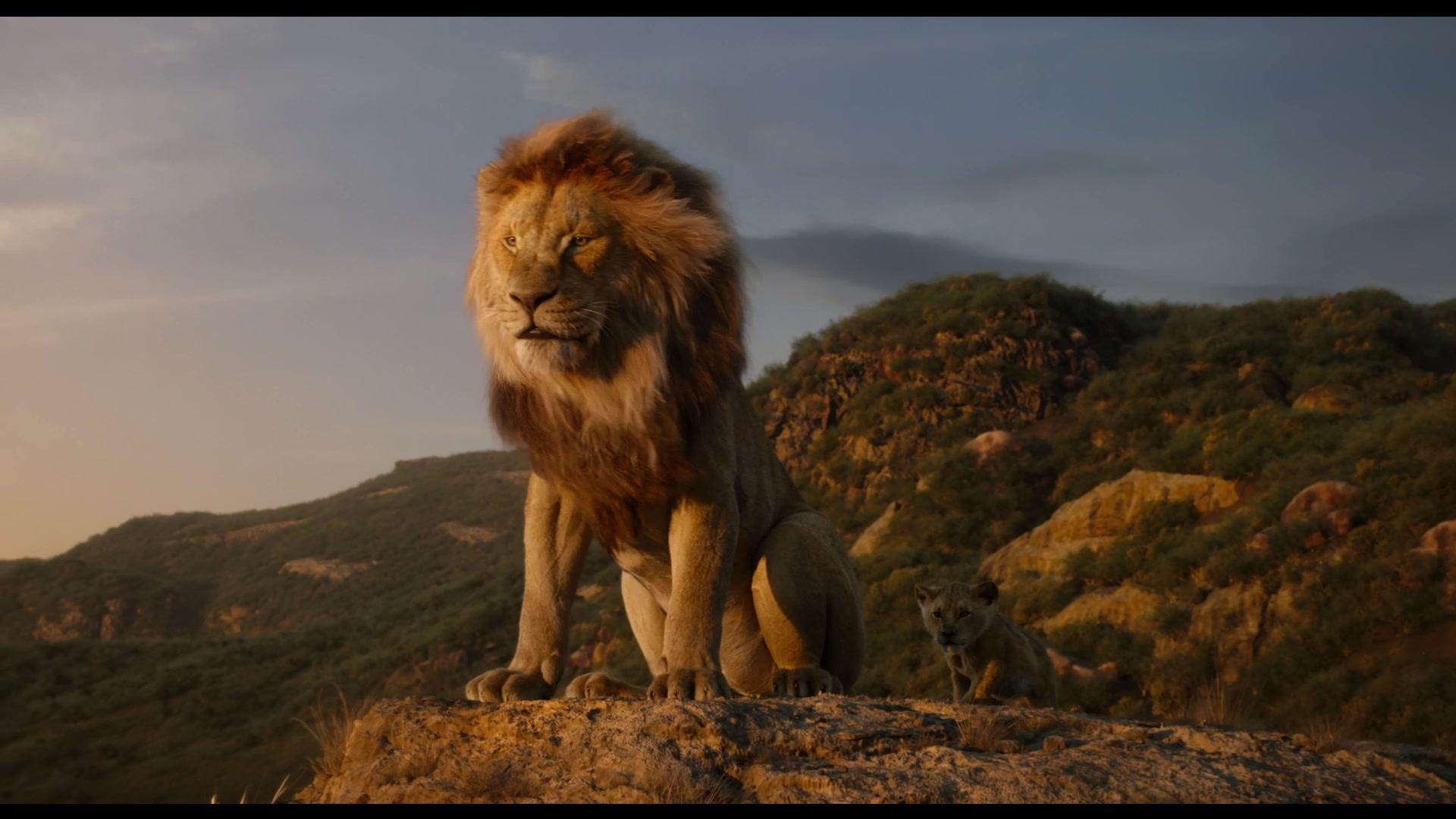 《狮子王》最强辛巴王者归来